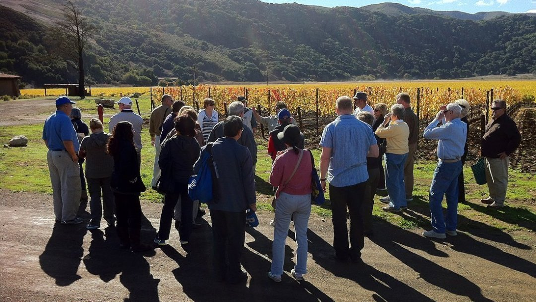 Education In The Vines