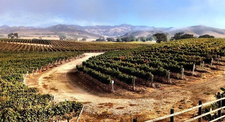 The Magic of Midweek in Santa Barbara Wine Country