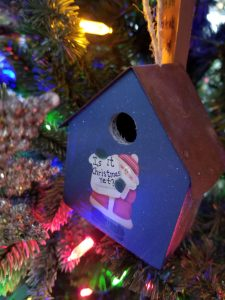 Surviving the Holiday Season with Kids