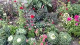 Grand hotel flower bed