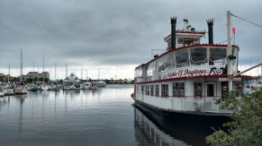 "Lady Dolphin of Daytona ""Paddle"" Boat"