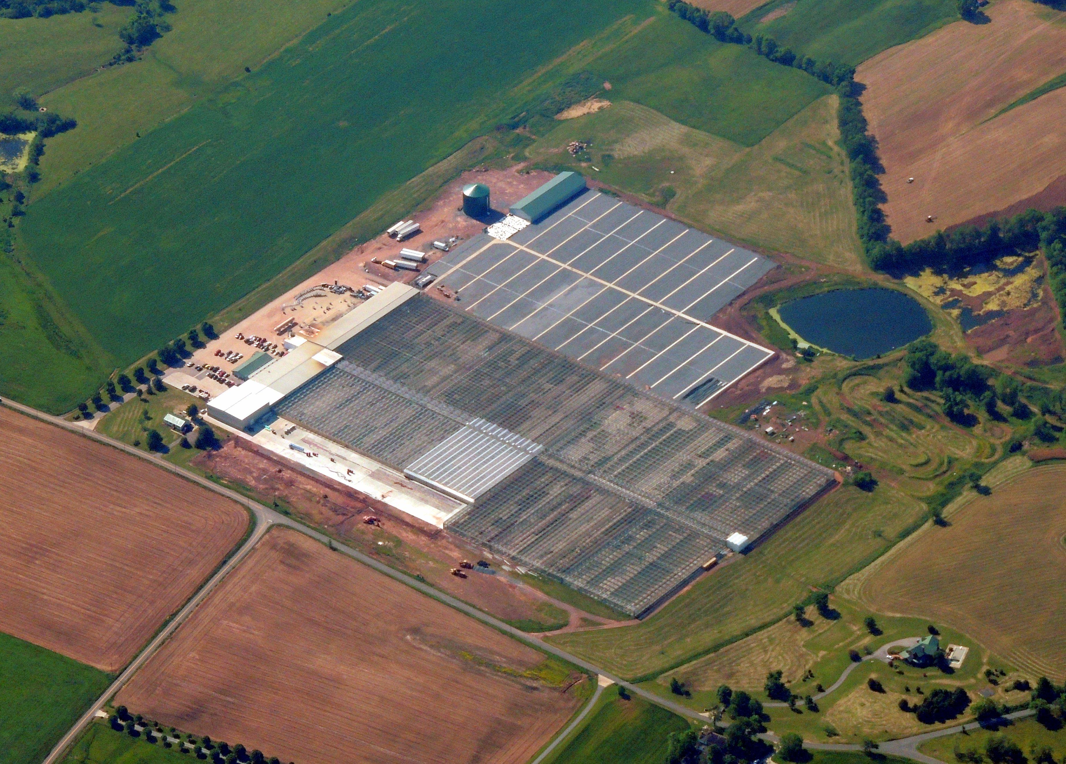 Clean Energy (Solar Farm)