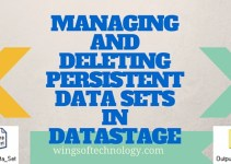 MANAGING-AND-DELETING-PERSISTENT-DATA-SETS-IN-DATASTAGE