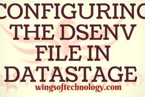 dsenv-file-in-datastage-configuration