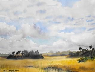 Everglades Skies by Wini Smart