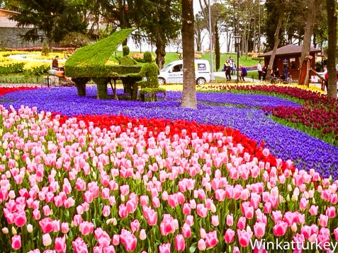 Seto en forma de piano de cola rodeado de un parterre de tulipanes en Emirgan