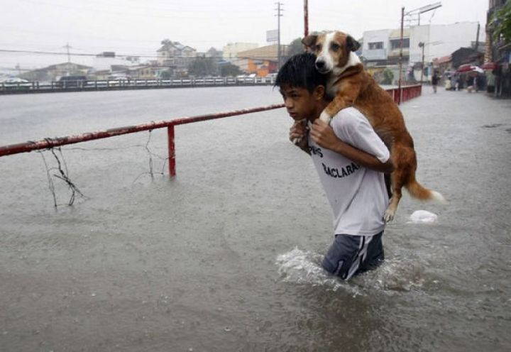 29 Powerful Pictures - A boy carries his dog to safety during a flood in the Philippines.
