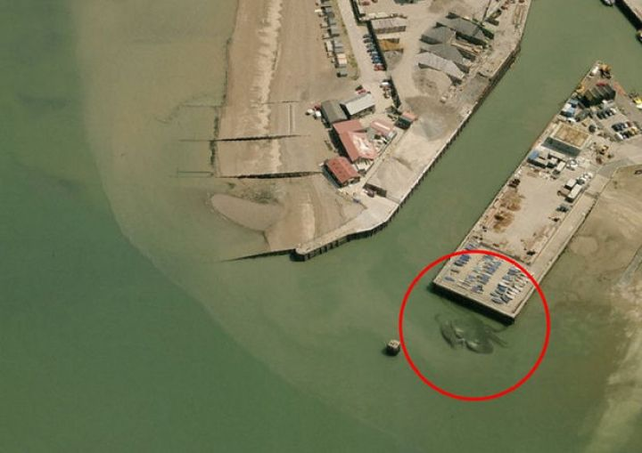 Notice a large crustacean lurking in the shallow water near this pier?
