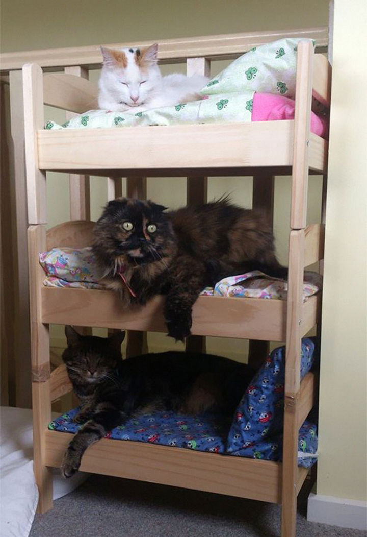 ...or stacked to make a cool hotel for cats (but make sure they're secured together properly!)