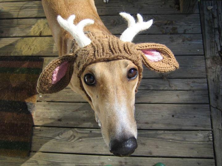 21 Crocheted Winter Hats - Deer Antler Snood/