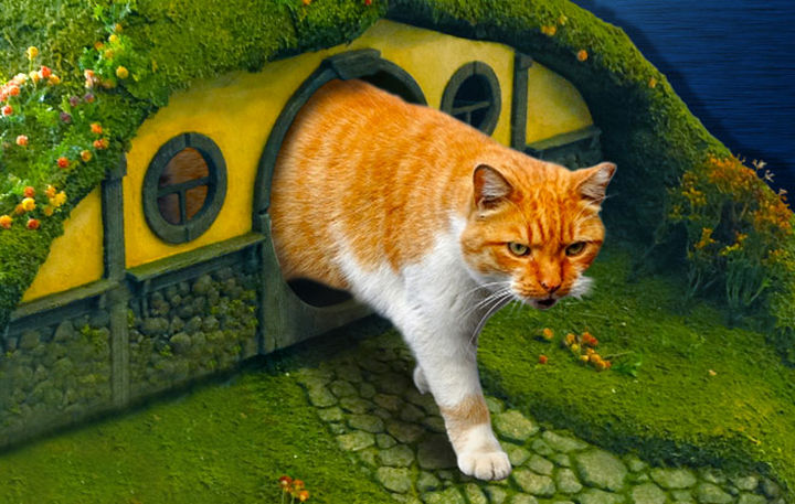 They are the luckiest cats ever with their LOTR custom-built litter box and scratching post.