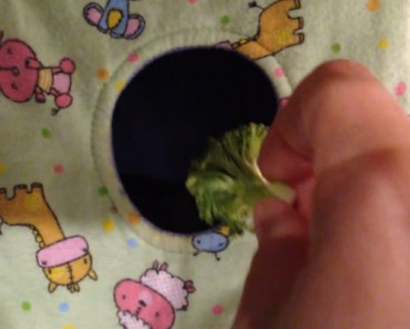 Pet Rat Won't Eat His Broccoli and Doesn't Want It in His House.