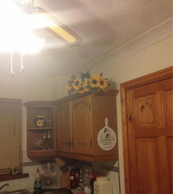 27 Stealthy Ninja Cats - Flower arrangements make good hiding places.