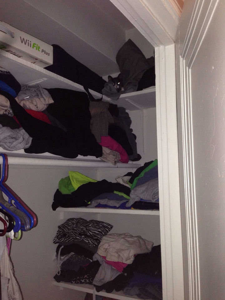 27 Stealthy Ninja Cats - Hiding in the closet is way too easy!