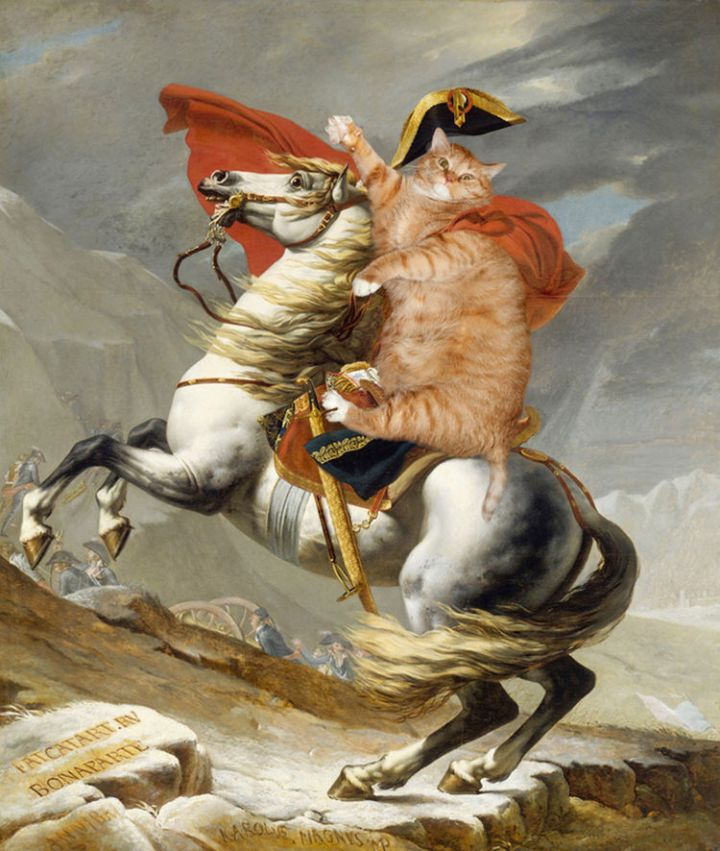 Fat Cat Photobombs Famous Paintings - Napoleon Crossing the Alps, Jacques-Louis David (1801)