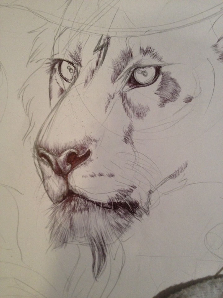 After the initial sketch of each character, she fills in the details for the lion.