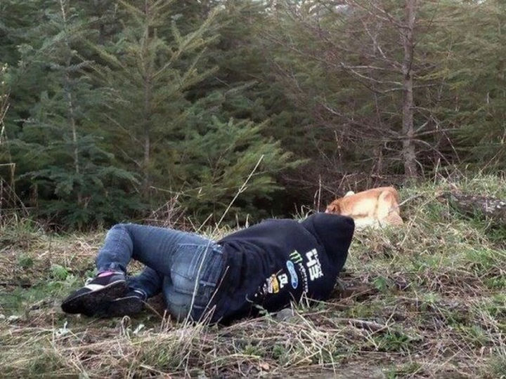 It was cold that day so Amanda went back to the truck to warm up. Shortly after, she noticed Bear was lying in the grass so she thought she'd try it again.