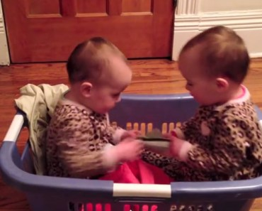 A Mother Caught Her Twins in the Laundry Basket With Socks.
