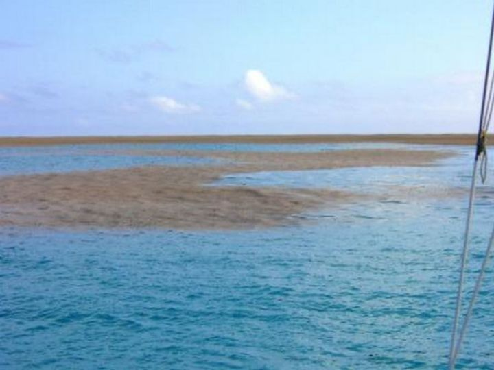 A sailing crew noticed what appeared to be a sandbar in the middle of the ocean.