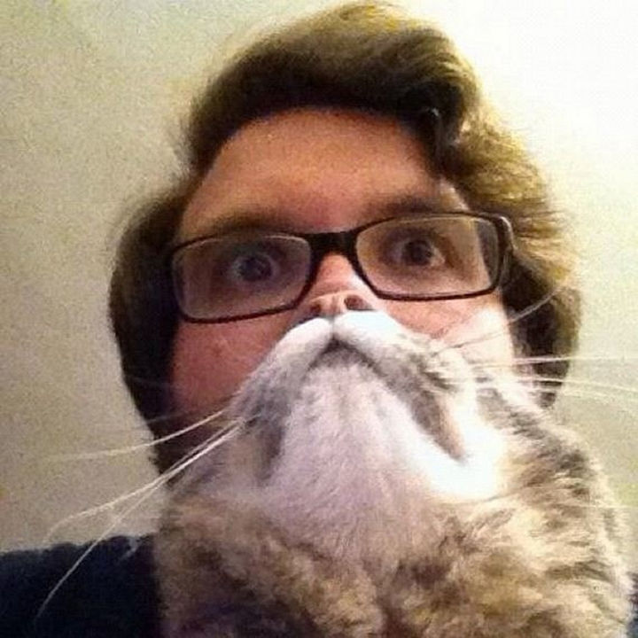 28 Perfectly Timed Photos of People Having a Bad Day - Attack of the cat beards!