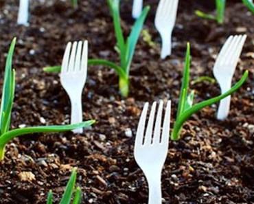 14 Amazing DIY Garden Ideas to Make Gardening Even More Fun.