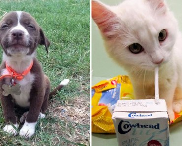 46 Happy Images That Will Make You Burst with Happiness.