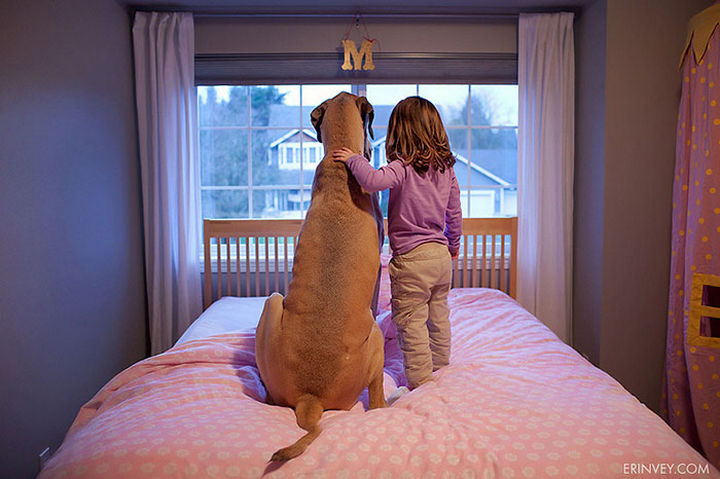 33 Adorable Photos of Dogs and Babies - Two girls spending time together.