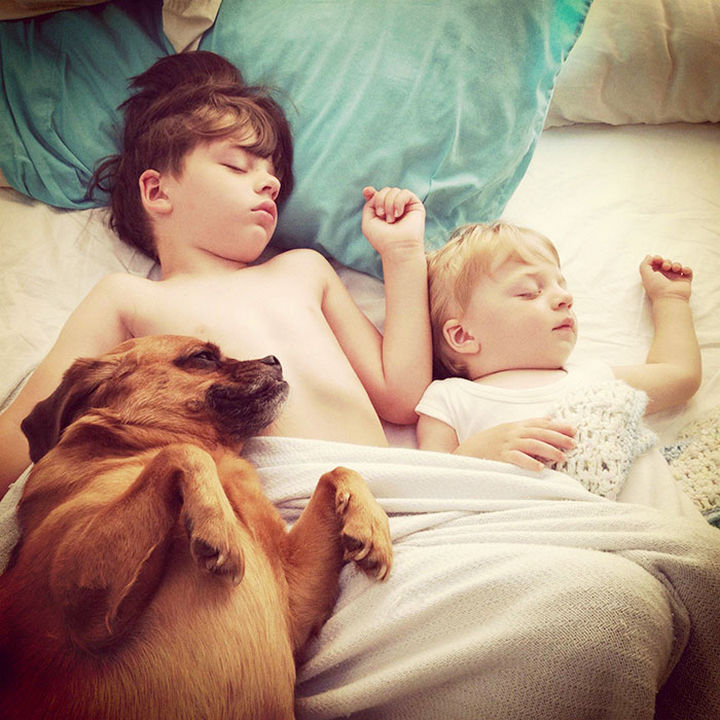 33 Adorable Photos of Dogs and Babies - Sleeping buddies.