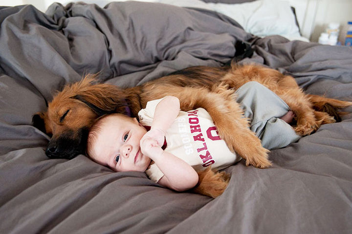 33 Adorable Photos of Dogs and Babies - Cuddling with his best friend.