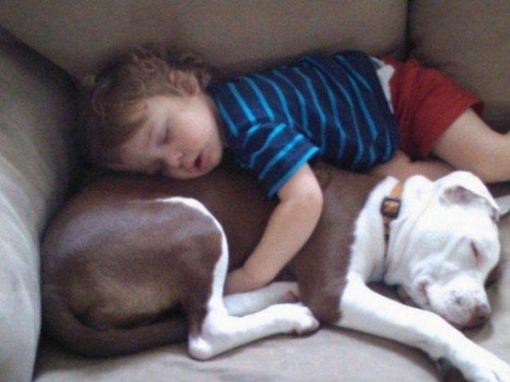 25 Kids Sleeping in the Strangest Places - Best friends forever.