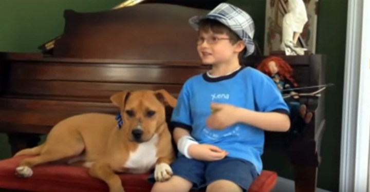 Mother Brings Home Xena the Pit bull for Her Autistic Son Jonny.