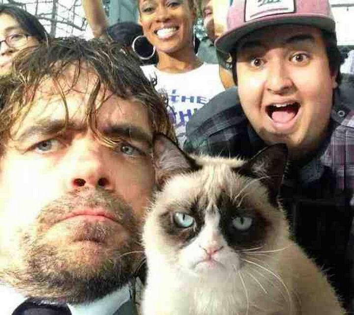 22 Funny Animal Selfies - An epic selfie of Peter Dinklage and Grumpy cat.