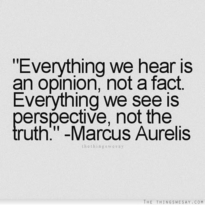 """10 Perspective Quotes - """"Everything we hear is an opinion, not a fact. Everything we see is perspective, not the truth."""""""