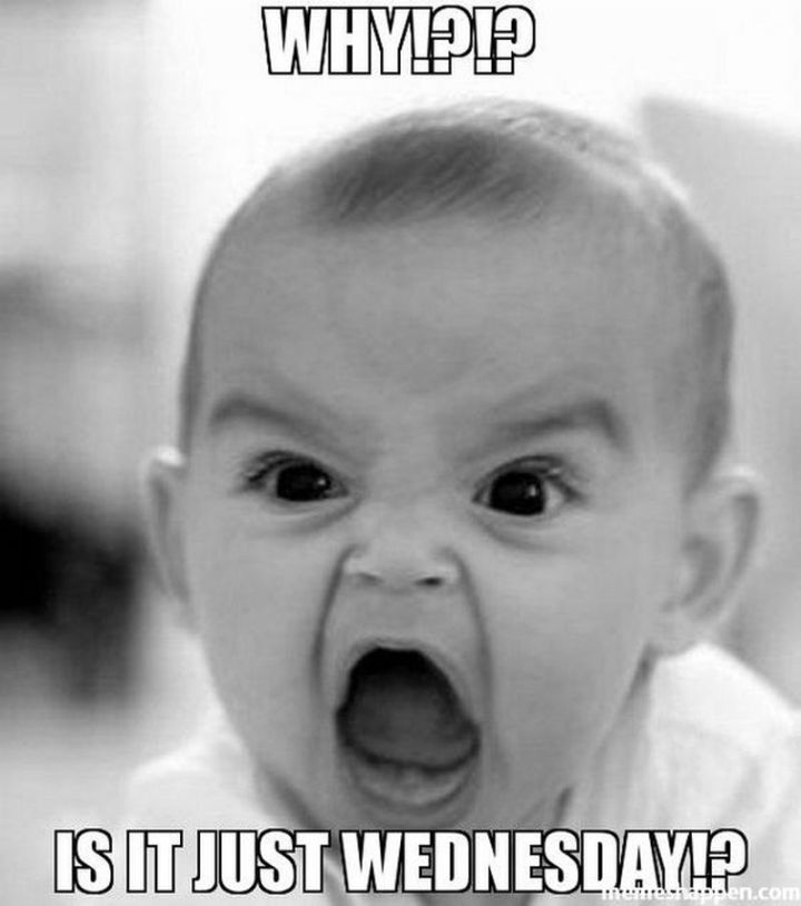 "15 Funny Wednesday Memes - ""Why!?!? Is it just Wednesday!?"""