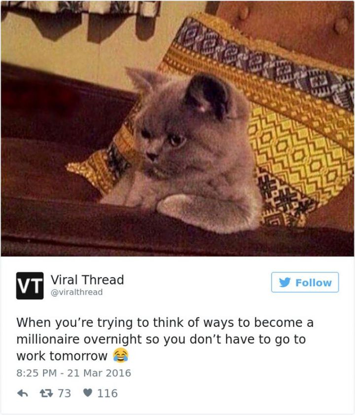 """47 Funny Work Memes - """"When you're <a href="""