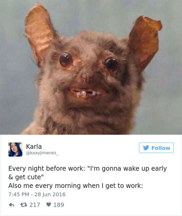 """47 Funny Work Memes - """"Every night before work: """"I'm gonna wake up early & get cute"""" Also me every morning when I get to work:"""""""