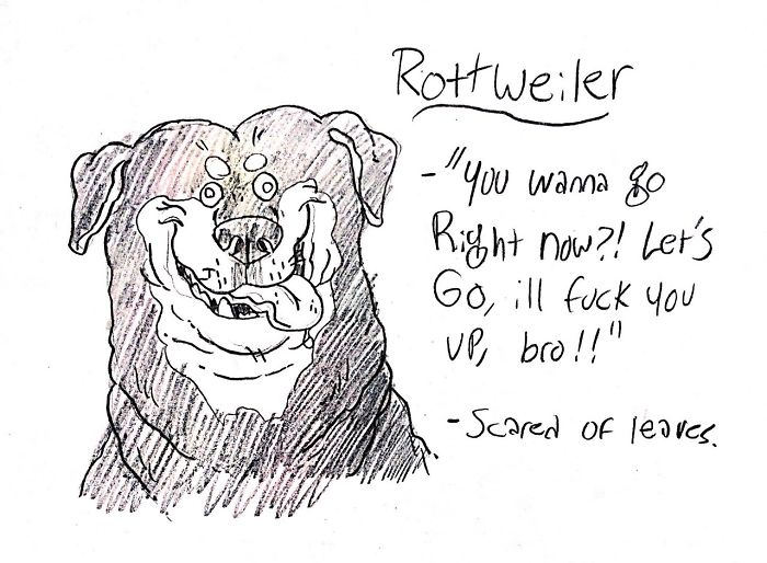 Funny Guide to Dog Breeds - Rottweiler.
