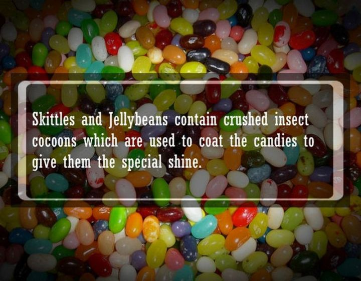 """19 Food Facts - """"Skittles and jellybeans contain crushed insect cocoons which are used to coat the candies to give them the special shine."""""""