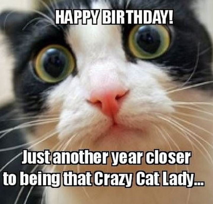 """Happy birthday! Just another year closer to being that crazy cat lady..."""