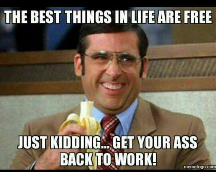"""21 Back to Work Memes - """"The best things in life are free. Just kidding...get your ass back to work!"""""""