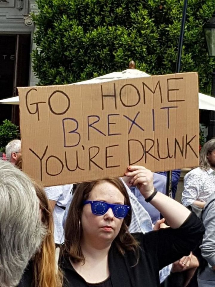 "23 Funny Anti-Brexit Signs - ""Go home Brexit. You're drunk."""