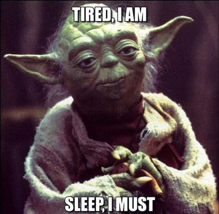 """37 Best Exhausted Memes - """"Tired, I am. Sleep, I must."""""""