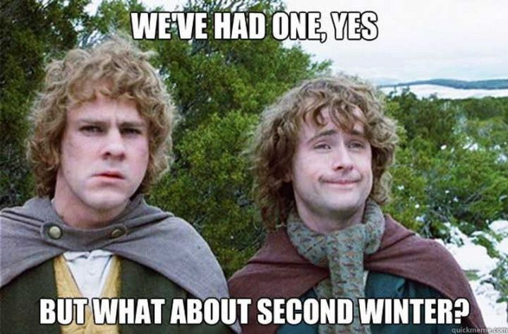 "55 Funny Winter Memes - ""We've had one, yes. But what about second winter?"""