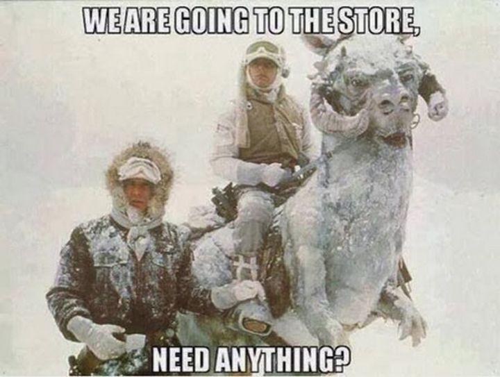 "55 Funny Winter Memes - ""We are going to the store, need anything?"""