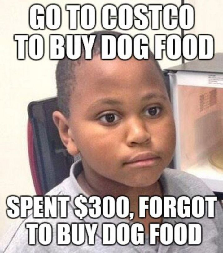 "29 Funny Costco Memes - ""Go to Costco to buy dog food. Spent $300, forgot to buy dog food."""