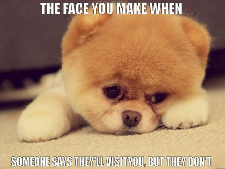 """101 I miss you memes - """"The face you make when someone says they'll visit you, but they don't."""""""