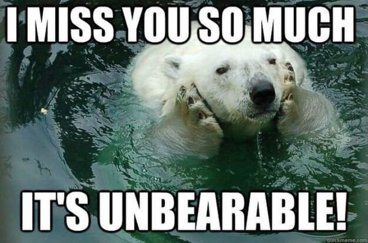 """101 I miss you memes - """"I miss you so much. It's unbearable."""""""
