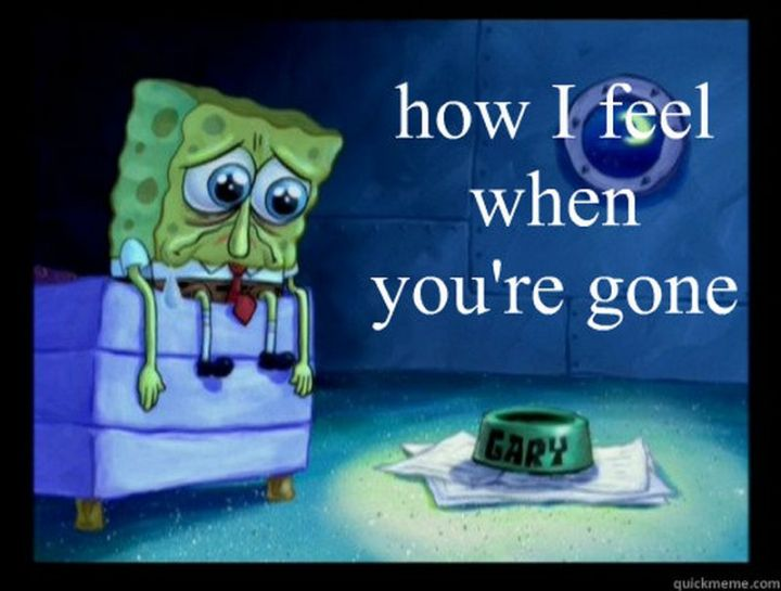 """101 I miss you memes - """"How I feel when you're gone."""""""