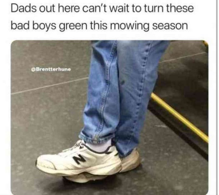 """71 Funny Dad Memes - """"Dads out here can't wait to turn these bad boys green this mowing season."""""""