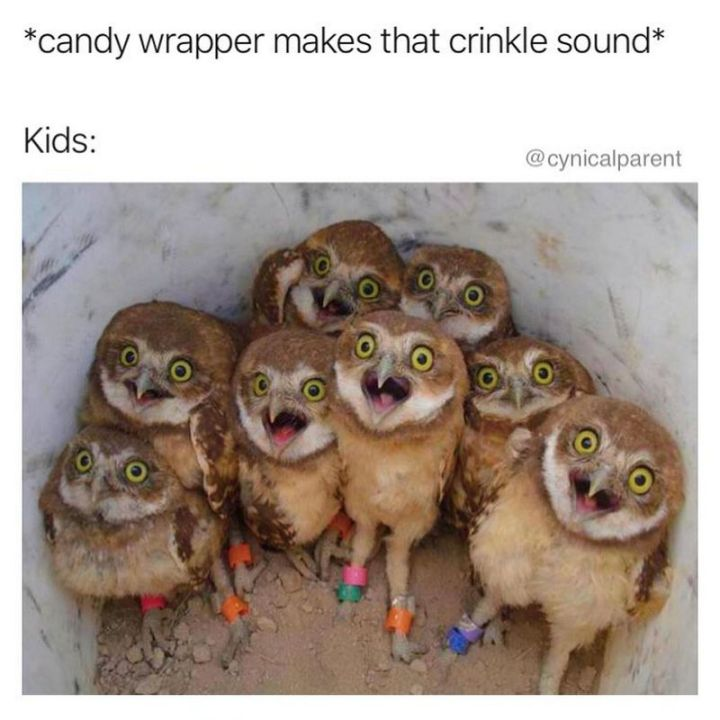 """101 Funny Mom Memes - """"*candy wrapper makes that crinkle sound*. Kids:"""""""
